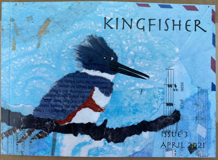 kingfisher-by-annette-makino-copy-2